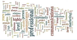 I created this personal branding wordle from references on my LinkedIn profile.